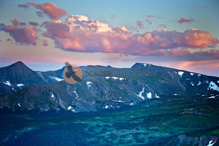 Pink sunset in Rocky Mountain National Park