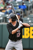 Nick Buss (17) of the Albuquerque Isotopes at bat against the Salt Lake Bees at Smith's Ballpark on April 21, 2014 in Salt Lake City, Utah.  (Stephen Smith/Four Seam Images)