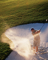 A golfer blasts out of the sand.