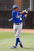 Jason Alfaro   - Kansas City Royals - 2009 spring training.Photo by:  Bill Mitchell/Four Seam Images