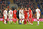 Cardiff - Wales - UK - 16th November 2018 - UEFA Nations League 2019 :<br />Wales v Denmark at the Cardiff City Stadium :<br />Tempers flare in the second half between Wales and Denmark players.