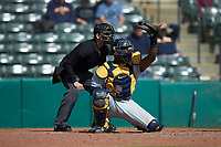 West Virginia Mountaineers catcher Paul McIntosh (34) reaches for a high pitch as home plate umpire Anthony Perez looks on during the game against the Illinois Fighting Illini at TicketReturn.com Field at Pelicans Ballpark on February 23, 2020 in Myrtle Beach, South Carolina. The Fighting Illini defeated the Mountaineers 2-1.  (Brian Westerholt/Four Seam Images)
