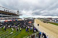 10th November 2020; Christchurch, New Zealand;  during the NZ Trotting Cup at Addington Raceway, Christchurch, New Zealand; Fans watch the racing