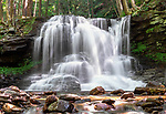 Dry Run Falls, Sullivan County, Loyalsock State Forest, PA