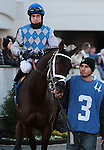 Strike the Note and Brian Hernandez Jr in the 8th race at Churchill Downs.  November 24, 2012.