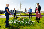 UHK maternity services planted a tree outside the hospital on Tuesday, as a symbol of their long-term commitment to working towards creating a better environment for our future generations. Front l to r: Sharon Breen and Sandra O'Connor. Back l to r: Paul Hughes (Clinical Lead) and Ferghal Grimes (UHK Manager)