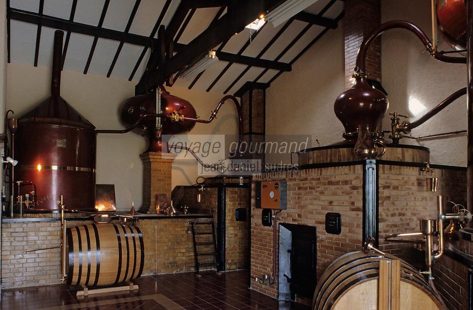 Europe/France/Poitou-Charentes/16/Charente/Cognac: Distillerie du chateau d'Uffaut - Cognac Camus - Alembic