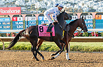 DEL MAR, CA  AUGUST 7:  #8 Princess Grace, ridden by Kent Desormeaux,<br /> In the post parade before the Yellow Ribbon Handicap (Grade ll), on August 7, 2021, at Del Mar Thoroughbred Club in Del Mar, CA. (Photo by Casey Phillips/Eclipse Sportswire/CSM)