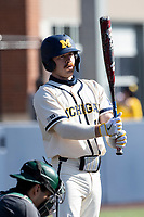 Michigan Wolverines catcher Griffin Mazur (13) at the plate against the Michigan State Spartans on March 21, 2021 in NCAA baseball action at Ray Fisher Stadium in Ann Arbor, Michigan. Michigan scored 8 runs in the bottom of the ninth inning to defeat the Spartans 8-7. (Andrew Woolley/Four Seam Images)
