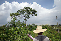 A local man walks through the mangroves of Zhanjiang, Guangdong Province. Over the past century, the world has lost over 50% of its coastal mangroves. They have been cleared mainly to make way for commercial shrimp and fish farms. The unique trees which live in salt water are valued for the ability to protect shorelines and are home to a diverse array of flora and fauna. 2010