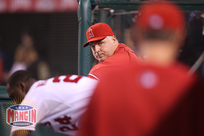ANAHEIM - OCTOBER 9:  Manager Mike Scioscia of the Los Angeles Angels of Anaheim watches from the dugout against the Boston Red Sox during Game 2 of the American League Division Series at Angel Stadium on October 9, 2009 in Anaheim, California. Photo by Brad Mangin