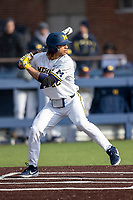 Michigan Wolverines first baseman Jordan Brewer (22) at bat against the Western Michigan Broncos on March 18, 2019 in the NCAA baseball game at Ray Fisher Stadium in Ann Arbor, Michigan. Michigan defeated Western Michigan 12-5. (Andrew Woolley/Four Seam Images)