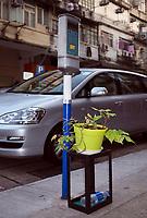 Hongkong, China, Asien, urbane Flora<br />  ***Keine Social_Media Nutzung***<br /> <br /> Engl.: Asia, China, Hong Kong, urban flora, plant, flower pot, car, street scene<br /> ***No social media use***