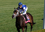 LEXINGTON, KY - APRIL 16: #8 Tepin and jockey Julien Leparoux win the 28th running of The Coolmore Jenny Wiley (Grade 1) $350,000 at Keeneland race course for owner Robert E. Masterson and trainer Mark Casse.  April 16, 2016 in Lexington, Kentucky. (Photo by Candice Chavez/Eclipse Sportswire/Getty Images)