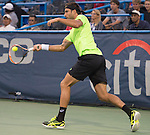 Marinko Matosevic (AUS) loses to Lleyton Hewitt (AUS) 6-4, 6-3 at the CitiOpen in Washington, D.C., Washington, D.C.  District of Columbia on July 29, 2014.