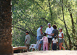 MEXICAN FAMILY AND FRIENDS ENJOY DAY IN THE WOODS