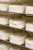Europe/France/Normandie/Basse-Normandie/14/Calvados/Pays d'Auge /Saint Loup-de-Fribois: Camembert au lait cru moulé à la louche de la fromagerie du village - affinage