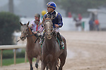 March 14, 2015: #5 Mufajaah with jockey Emmanuel Esquivel aboard in the Azeri Stakes at Oaklawn Park in Hot Springs, AR. Justin Manning/ESW/CSM