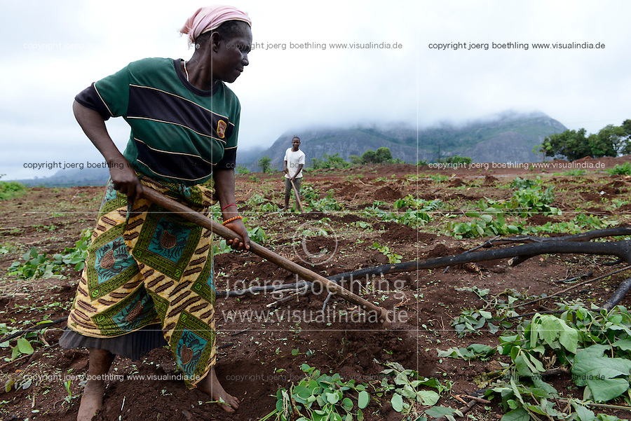 MOZAMBIQUE, Sussundenga, BAGC Beira agricultural growth corridor, small scale farmer work on their farm with hoe to plant maize / MOSAMBIK, Sussundenga, BAGC Beira agricultural growth corridor, Kleinbauern bearbeiten ein Feld fuer den Maisanbau mit Hacke