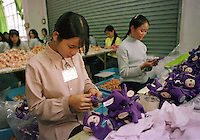 """DOR-LOK TOY FACTORY,  AT  BUJI IND. ZONE PAN TIN DISTRICT (OUTSIDE SHENZHEN), CHINA.  THE FACTORY MAKES THE """"TELLY TUBBY"""", TOYS ."""