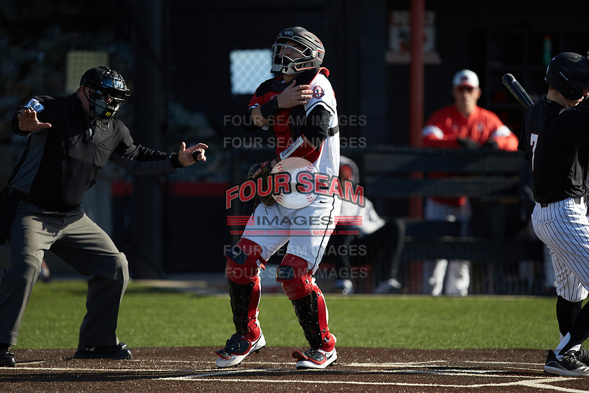 North Greenville Crusaders catcher John Michael Faile (13) grabs his shoulder after having been hit by a foul ball during the game against the Bellarmine Knights at Ashmore Park on February 7, 2020 in Tigerville, South Carolina. The Crusaders defeated the Knights 10-2. (Brian Westerholt/Four Seam Images)