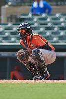 Baltimore Orioles Jean Carrillo (9) during an instructional league game against the Minnesota Twins on September 22, 2015 at Ed Smith Stadium in Sarasota, Florida.  (Mike Janes/Four Seam Images)
