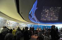 Aktionstag im Zoo Leipzig - Besucher können ein wenig mehr hinter die Gitter schauen und zahlreiche Fütterungen erleben - im Bild: feature Aquarium Panoramabecken. Foto: Norman Rembarz<br /> <br /> Norman Rembarz , Autorennummer 41043728 , Augustenstr. 2, 04317 Leipzig, Tel.: 01794887569, Hypovereinsbank: BLZ: 86020086, KN: 357889472, St.Nr.: 231/261/06432 - Jegliche kommerzielle Nutzung ist honorar- und mehrwertsteuerpflichtig! Persönlichkeitsrechte sind zu wahren. Es wird keine Haftung übernommen bei Verletzung von Rechten Dritter. Autoren-Nennung gem. §13 UrhGes. wird verlangt. Weitergabe an Dritte nur nach  vorheriger Absprache. Online Nutzung ist separat kostenpflichtig !
