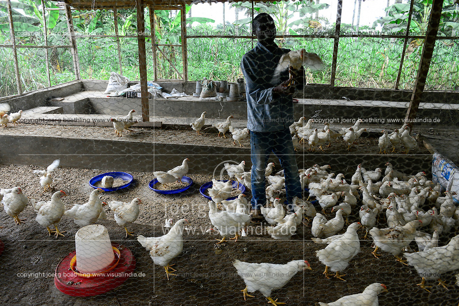 NIGERIA, Oyo State, Ibadan, village Shukuru, chicken farm, breeding of broiler in stable / Aufzucht von Masthaehnchen, Broiler, FADU Farmer Kayode Adedeji