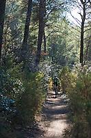 Man riding a mountain bike through a forest during a race.