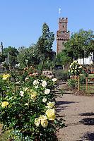 Almosenturm (14.JH.) und Rosengarten in Obernburg am Main, Bayern, Deutschland