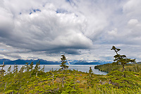 Coastal landscape overlooking Port Wells and Chugach mountains, Chugach National Forest, Prince William Sound, Alaska.