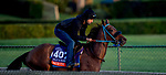 October 30, 2019: Breeders' Cup Filly & Mare Turf entrant Mirth, trained by Philip D'Amato, exercises in preparation for the Breeders' Cup World Championships at Santa Anita Park in Arcadia, California on October 30, 2019. Michael McInally/Eclipse Sportswire/Breeders' Cup/CSM