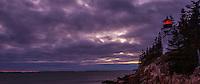 Purple Breezes