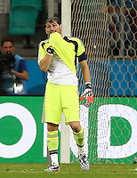 Spain goalkeeper Iker Casillas shows a look of dejection after his mistake led to the fourth Netherlands goal