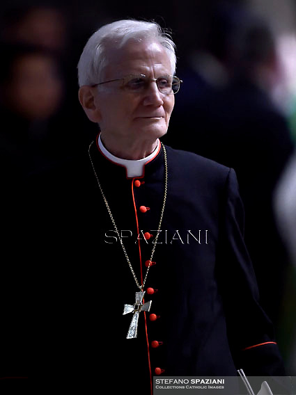 cardinal Raffaele Farina,Pope Francis,  at St. Peter's Basilica in Vatican.during the mass New Cardinals on February 15 2015