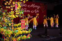 Tet In Seattle,  Vietnamese New Year Festival 2020, Seattle Center, WA, USA.