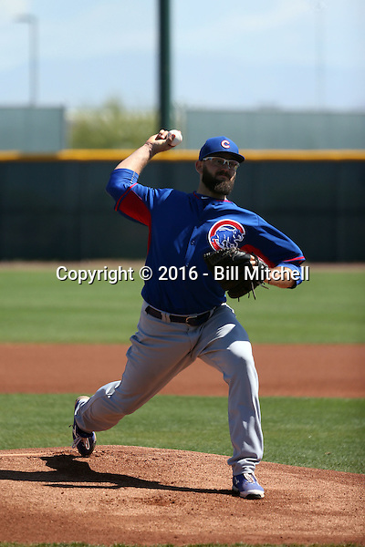 Stephen Fife - Chicago Cubs 2016 spring training (Bill Mitchell)