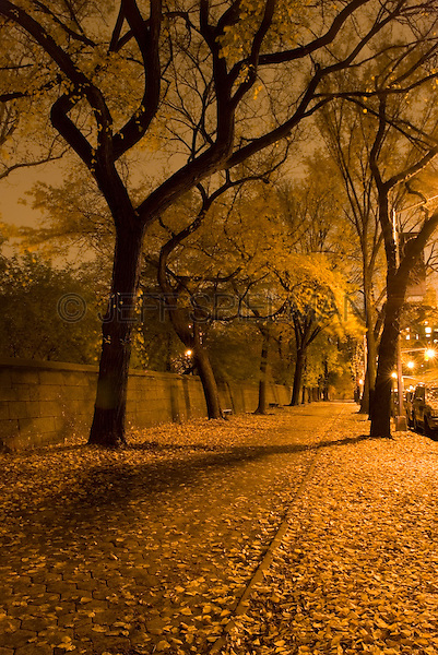 AVAILABLE FROM JEFF AS A FINE ART PRINT.<br /> <br /> AVAILABLE FROM JEFF FOR COMMERCIAL AND EDITORIAL LICENSING.<br /> <br /> Autumn Foliage in Central Park along Fifth Avenue at Night, Upper East Side, New York City, New York State, USA