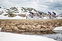 Chris Hamilton (AUS/DSM) leading a 2nd group up the Passo San Bernardino (2065m/SUI)<br /> <br /> 104th Giro d'Italia 2021 (2.UWT)<br /> Stage 20 (through Switzerland) from Verbania to Valle Spluga-Alpe Motta (164km)<br /> <br /> ©kramon