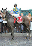 Emma's Encore (no. 1), ridden by Junior Alvarado and trained by H. Allen Jerkens, wins the 10th running of the grade 1 Prioress Stakes for three year old fillies on August 4, 2012 at Saratoga Race Track in Saratoga Springs, New York.  (Bob Mayberger/Eclipse Sportswire)