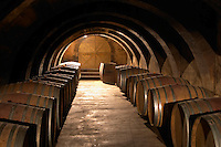 The barrel aging cellar with lines of barriques and dramatic lighting. Chateau Mourgues du Gres Grès, Costieres de Nimes, Bouches du Rhone, Provence, France, Europe