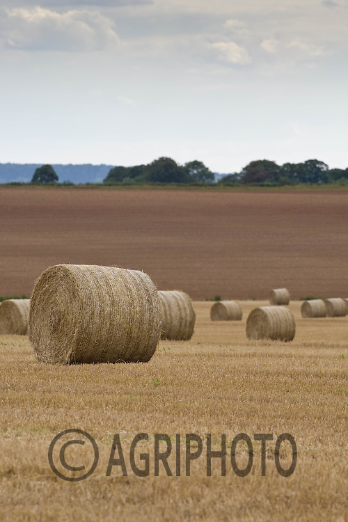 Round straw bales in the Linconshire fields