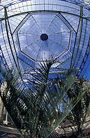 Océanie/Australie/Australie Méridionale/Adelaïde : Jardin botanique - La Maison Tropicale détail serre