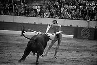 Corrida aux Arènes du Soleil d'Or (quartier des Arènes). 2 octobre 1966. Scène de tauromachie. Au 1er plan Fernando Tortosa