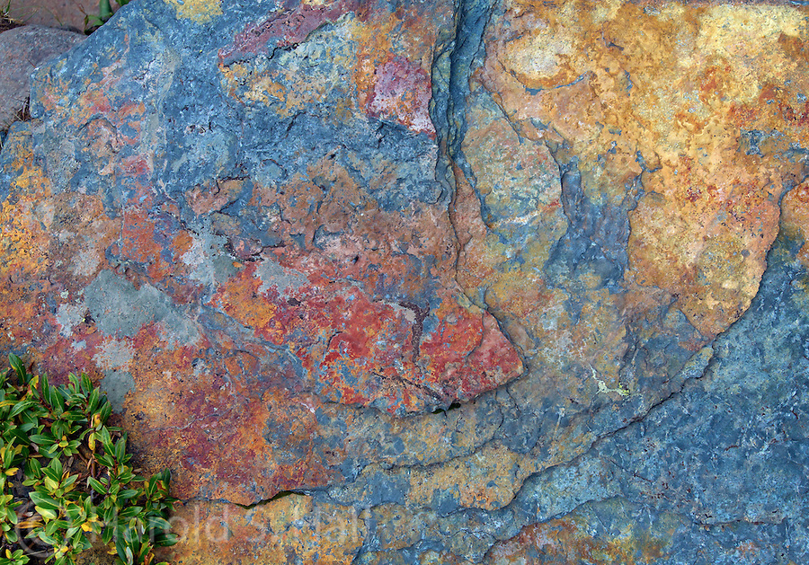 Colorful modern design in a rock.