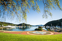 Spring in Picton Harbour, Marlborough, Nelson Region, South Island, New Zealand