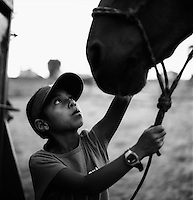 A young boy holds onto a suicide horse. Many young Native Americans grow up watching their relatives compete in the Suicide Race. It is seen as a rites of passage from boyhood to manhood. The Omak Suicide Race is part of the Omak Stampede, a rodeo which is held on the Colville Native American / Indian Reservation...