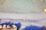 Salt At The Dead Sea