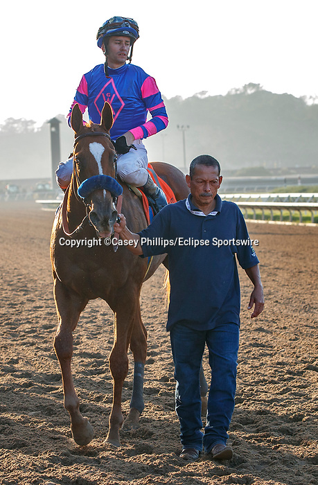 DEL MAR, CA  SEPTEMBER 4:  #7 Grace Adler, ridden by Flavien Prat, returns to the connections after winning the TVG Del Mar Debutante (Grade l)  on September 5, 2021 at Del Mar Thoroughbred Club in Del Mar, CA.(Photo by Casey Phillips/Eclipse Sportswire/CSM)