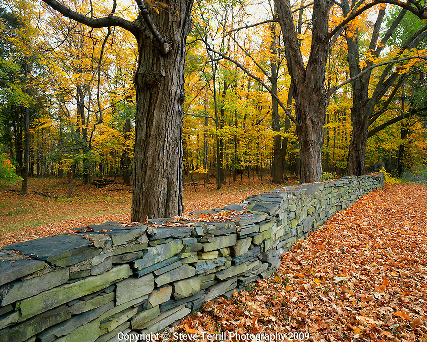 Hand built stone fence located in Greene County New York